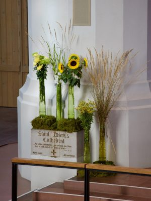 Experimental flowers in the Nave