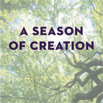 A Season of Creation