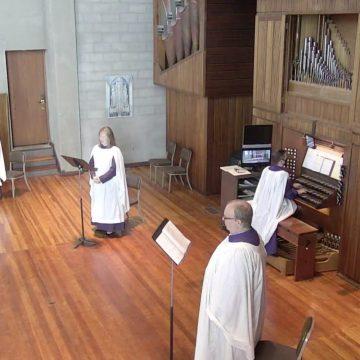 The Seventeenth Sunday after Pentecost, 2020