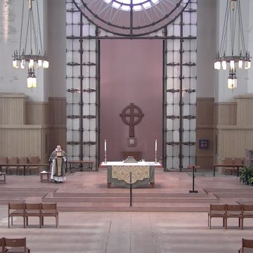 The Fifteenth Sunday After Pentecost, 2020